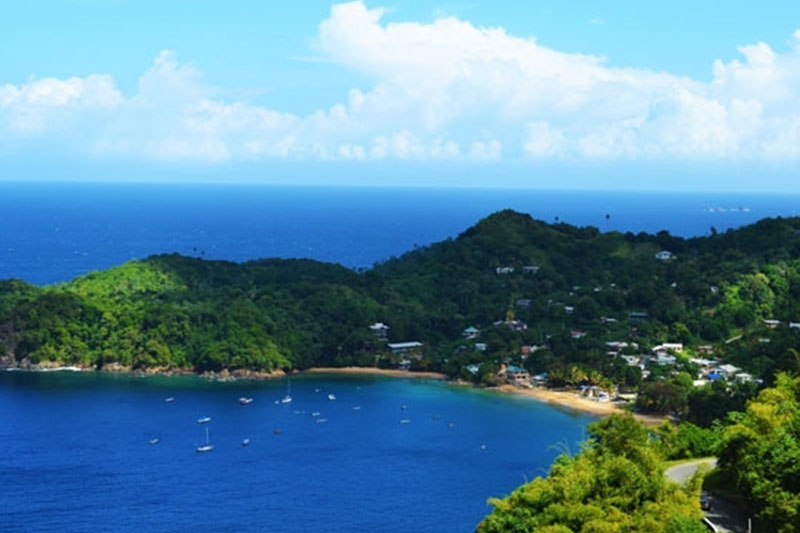 Daily Island Tour